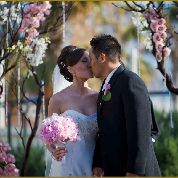 Intimate Elopements & Weddings